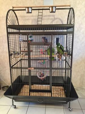 Cage perroquet Amazone SOLDES