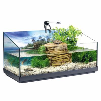Bac tortue d 39 eau ciel et terre for Accessori acquario tartarughe