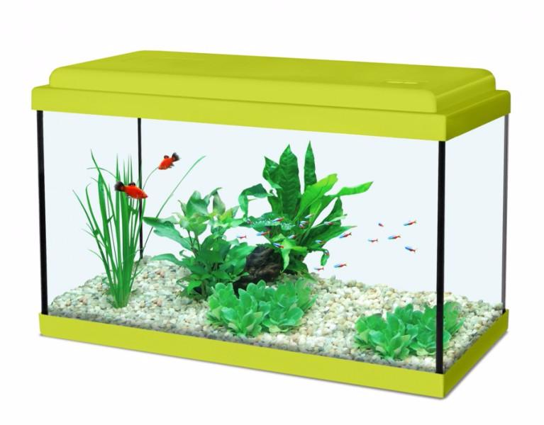 aquarium 30 cm 4 couleurs ciel et terre. Black Bedroom Furniture Sets. Home Design Ideas