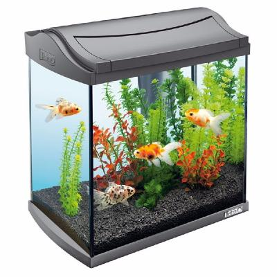 aquarium complet 20l filtration pompe air ciel et terre. Black Bedroom Furniture Sets. Home Design Ideas