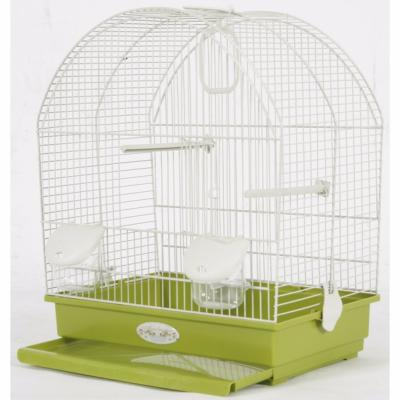 Cage oiseaux gusta olive